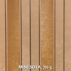 MINESOTA-711-5