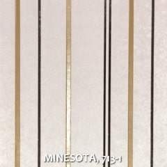 MINESOTA-713-1