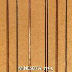 MINESOTA-713-3
