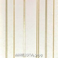 MINESOTA-713-7