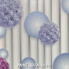 MINESOTA-714-2