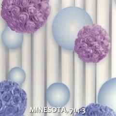 MINESOTA-714-3
