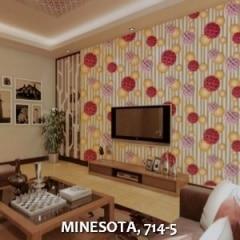 MINESOTA-714-5