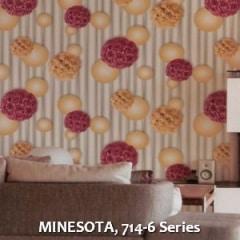 MINESOTA-714-6-Series