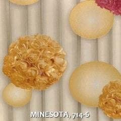 MINESOTA-714-6