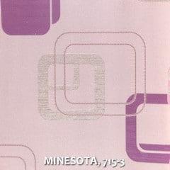MINESOTA-715-3