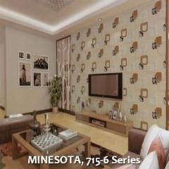 MINESOTA-715-6-Series