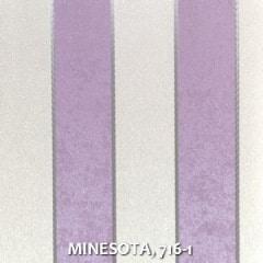 MINESOTA-716-1