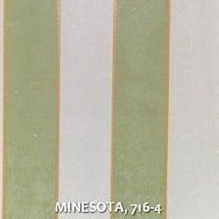 MINESOTA-716-4