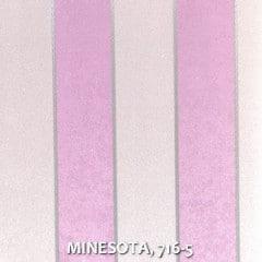 MINESOTA-716-5