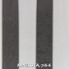 MINESOTA-716-6