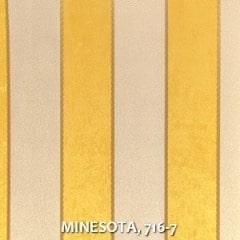 MINESOTA-716-7