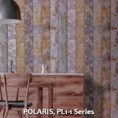 POLARIS-PL1-1-Series