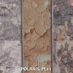 POLARIS-PL1-1