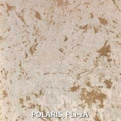POLARIS-PL1-2A