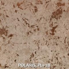 POLARIS-PL1-2B