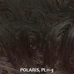 POLARIS-PL11-3