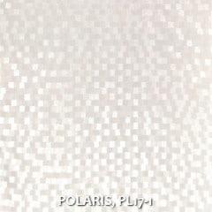 POLARIS-PL17-1