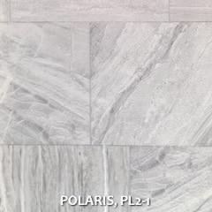 POLARIS-PL2-1