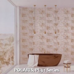 POLARIS-PL3-1-Series