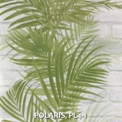 POLARIS-PL4-1
