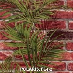 POLARIS-PL4-2