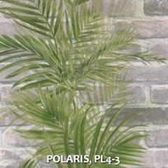 POLARIS-PL4-3