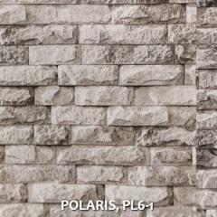 POLARIS-PL6-1