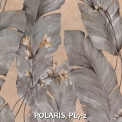 POLARIS-PL7-2