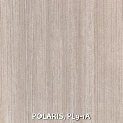 POLARIS-PL9-1A