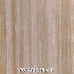 POLARIS-PL9-1B