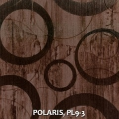 POLARIS-PL9-3