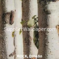 ROCK, DV1480