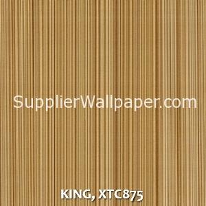 KING, XTC875