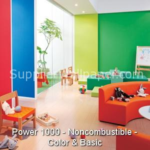 Power 1000 - Noncombustible - Color & Basic