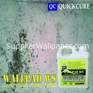 Wallpad WS