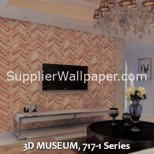 3D MUSEUM, 717-1 Series