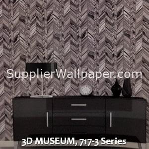 3D MUSEUM, 717-3 Series