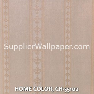 HOME COLOR, CH-55102