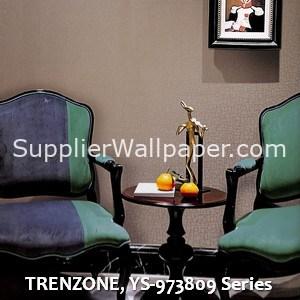 TRENZONE, YS-973809 Series