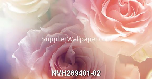 NVH289401-02